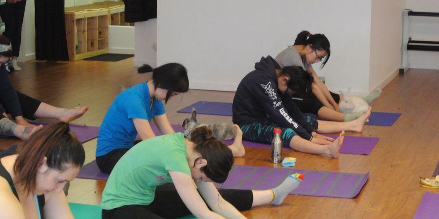 Cours de yoga avec lapins, au Sunberry Fitness de Richmond, au Canada