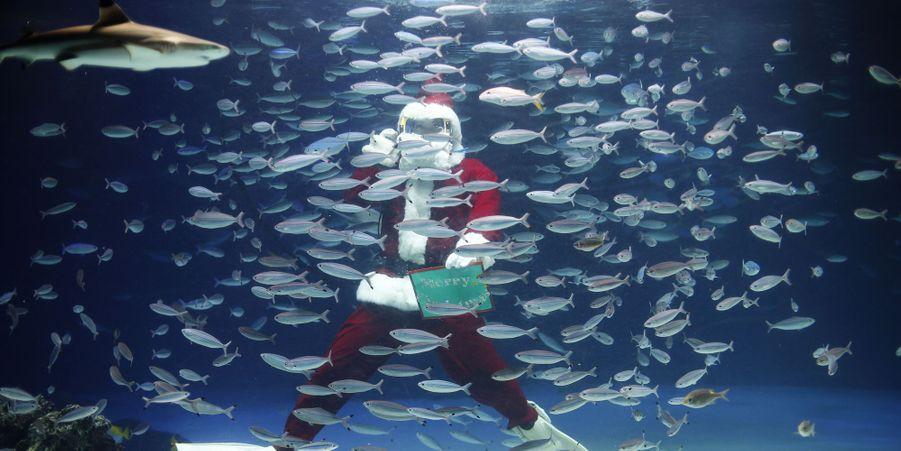 C'est Noël pour tout le monde