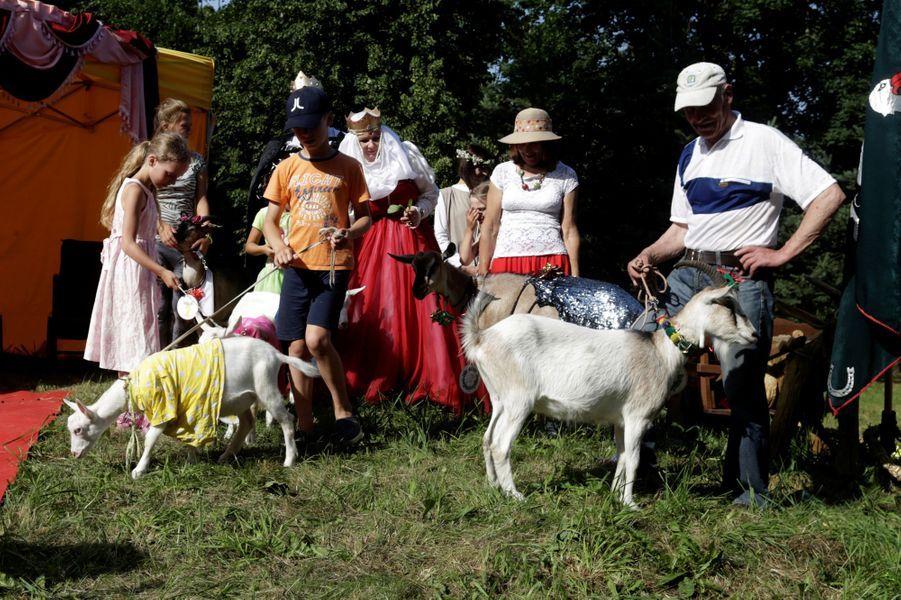 Demyte a été sacrée au concours de la plus belle chèvre à Ramygala, en Lituanie.
