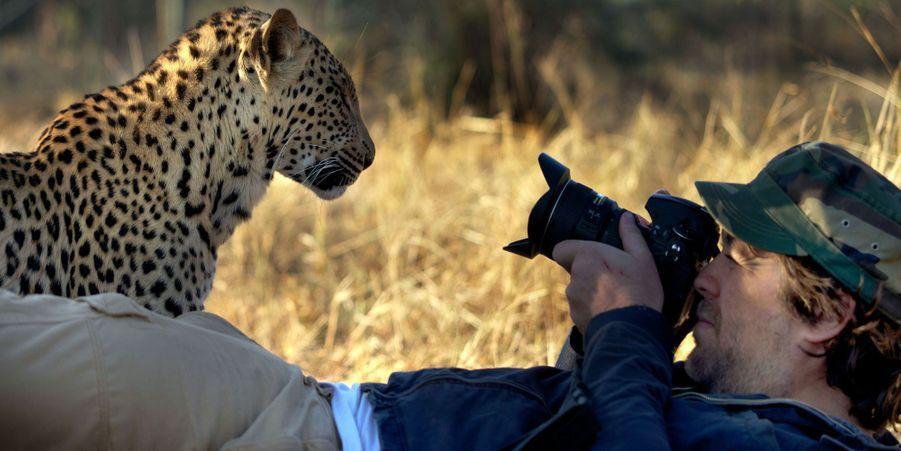 La rencontre du photographe et du léopard