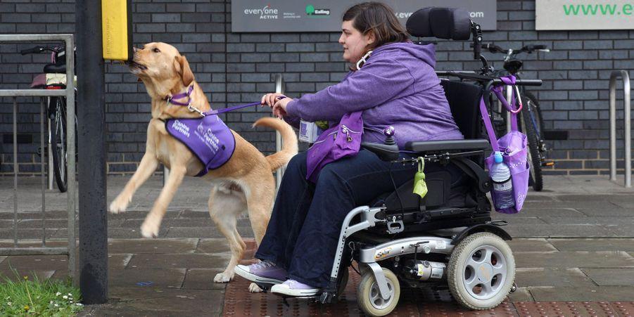Griffin, le chien de service qui vient en aide à Clare
