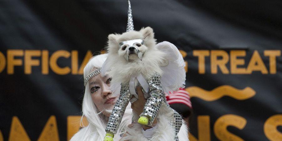 La parade des chiens déguisés pour Halloween de Manhattan