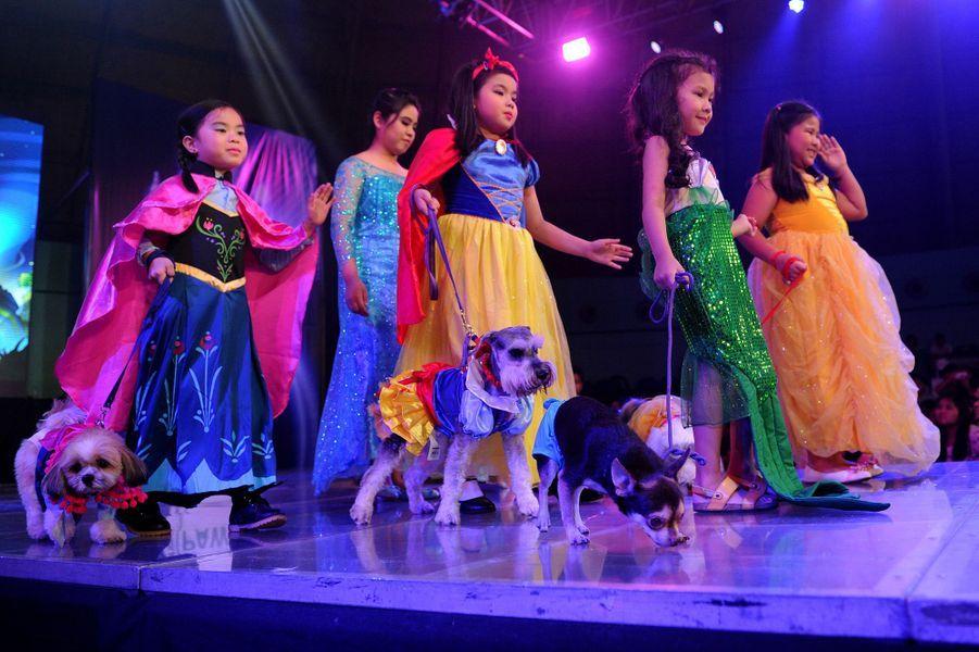 Les animaux stars d'un défilé à Manille, aux Philippines