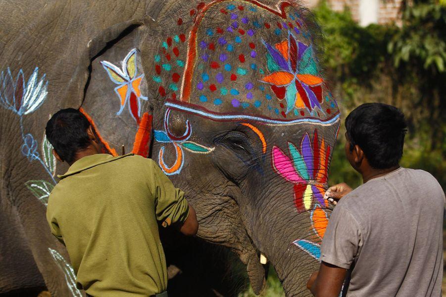 Les éléphants stars d'un festival de cinq jours au Népal