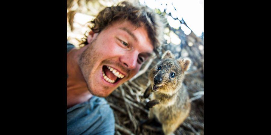 Les selfies d'Allan, l'ami des animaux