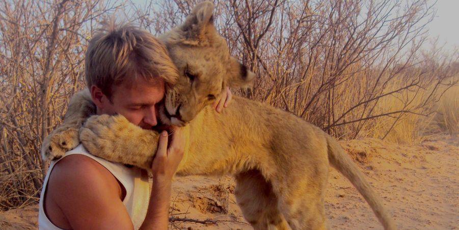 Sirga, la lionçonne sauvée par Valentin