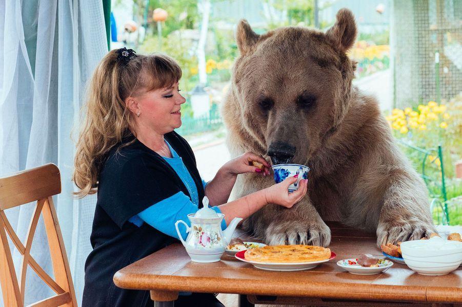 Un couple de Russes mène la belle vie grâce à Stepan, leur ours de compagnie de 136 kilos, depuis 23 ans.