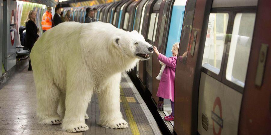 Un ours polaire dans le métro londonien