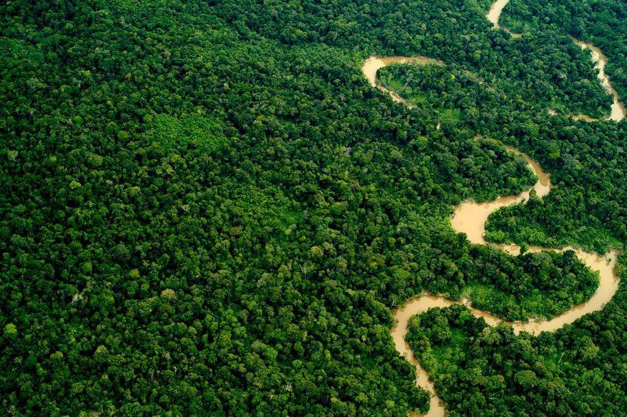 La fôret Amazonienne couvre plus de 5,5 millions de km² partagés entre neuf pays et joue un rôle essentiel dans la répartition de la chaleur sur Terre.