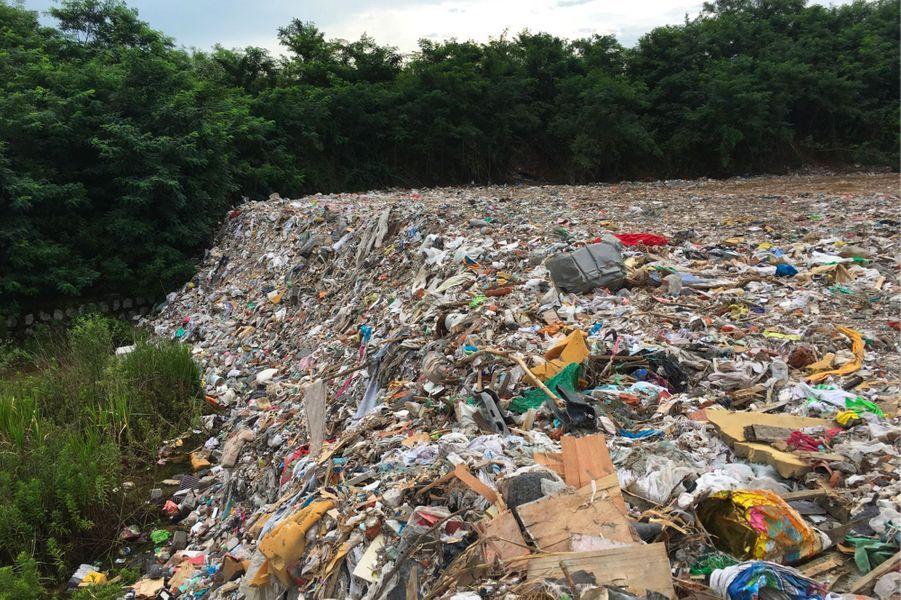 Les 20 000 tonnes de déchets, apposées sur le littoral du lac Tai de Chine