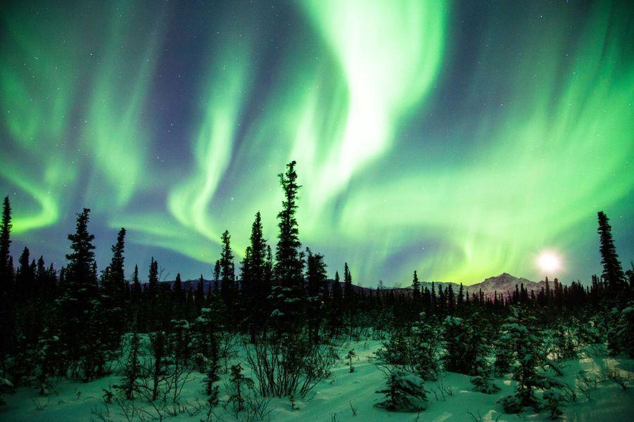 En Alaska