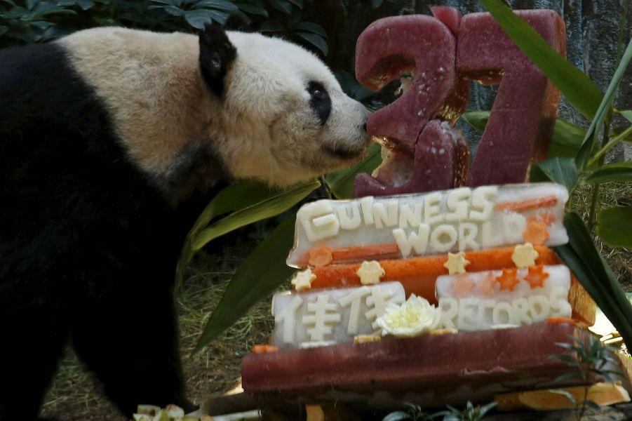 Jia Jia fête ses 37 ans