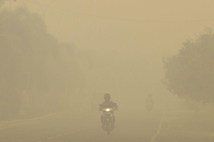 L'Asie du Sud-Est étouffe sous les incendies illégaux