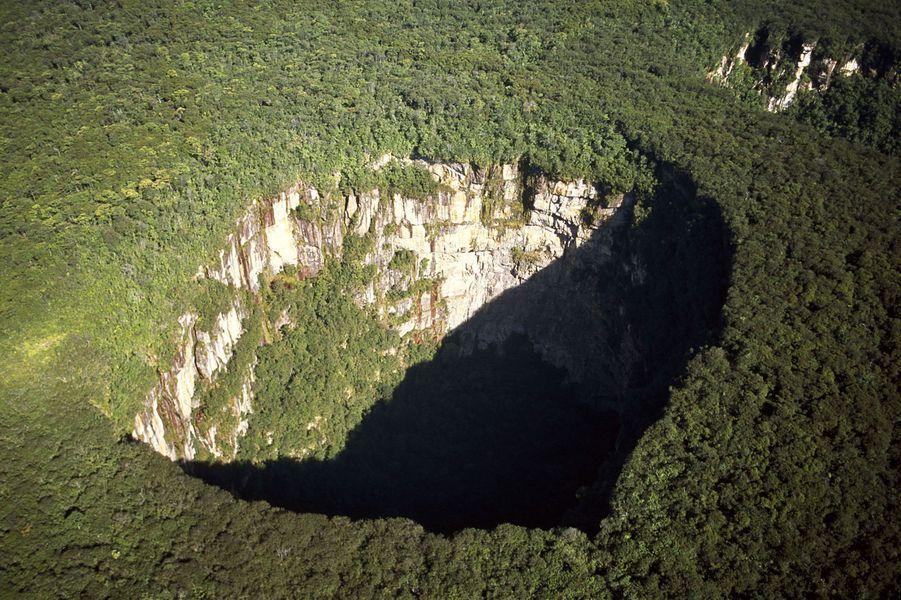 Jaua-Sarisarinama-National-Park-Venezuela
