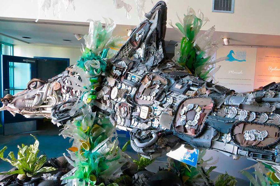 L'intriguant aquarium des animaux recyclés