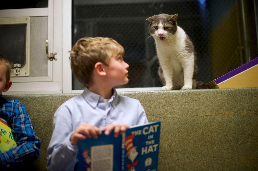 Les enfants qui murmuraient à l'oreille des chats