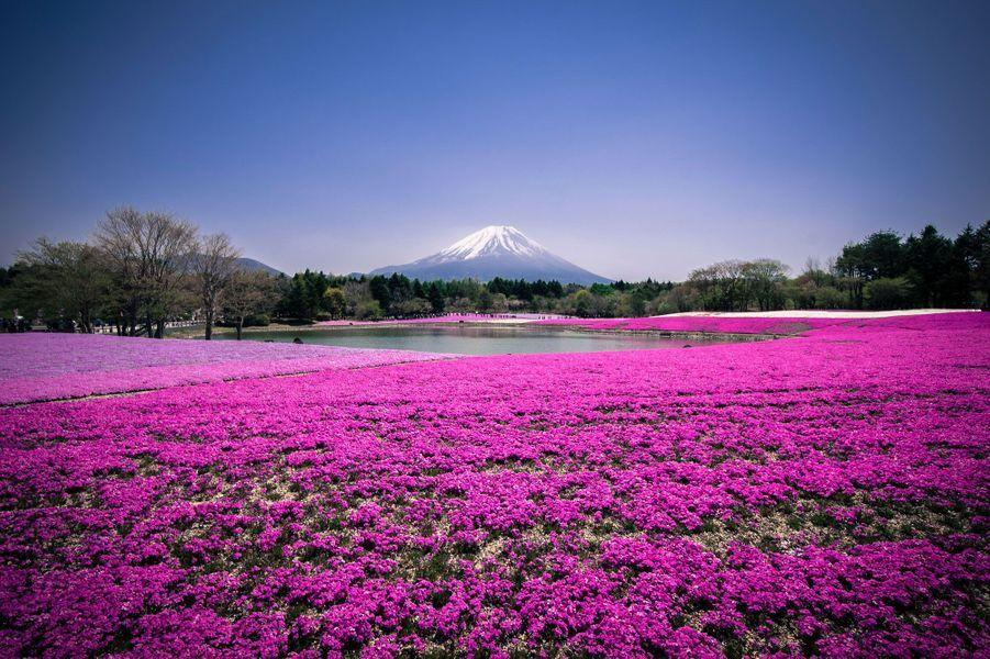 Parc de Takinoue, Hokkaido (Japon)