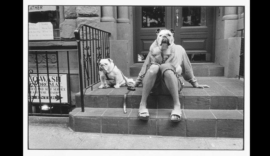 Fils d'émigrés russes, né en France en 1928, Elliott Erwitt posera ses valises à New York au début des années 50. Et s'il fera à plusieurs reprises le tour du monde, le photographe américain éprouvera toujours une tendresse particulière pour les rues et les habitants de la Big Apple.