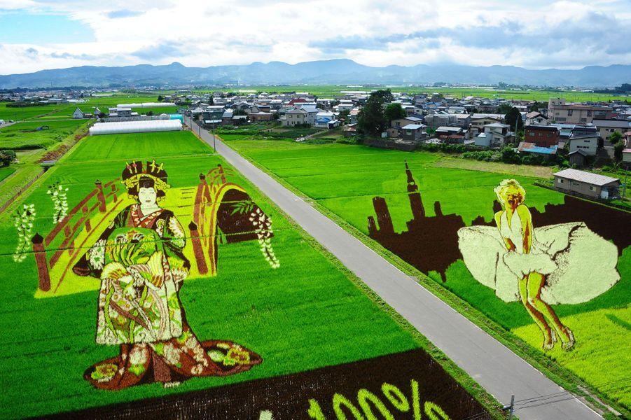 Quand les riziculteurs japonais transforment leurs cultures en oeuvres d'art