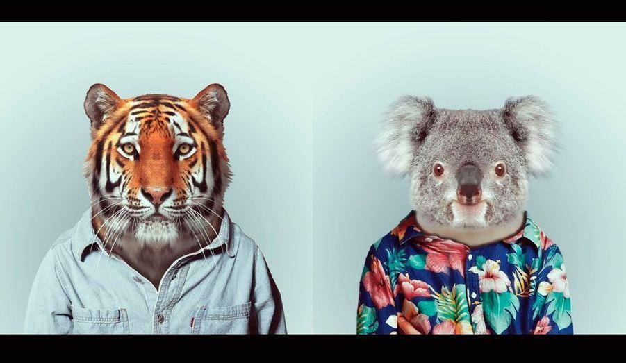 """Le talentueux photographe espagnol Yago Partal a imaginé un zoo où les animaux seraient habillés comme des humains. Né en 1982 dans la région de Barcelone, le Catalan a beaucoup travaillé pour le cinéma, notamment comme concepteur visuel sur """"La Piel que habito"""" de Pedro Almodovar et """"The Impossible"""" de Juan Antonio Bayona. Voici les huit portraits les plus saisissants."""