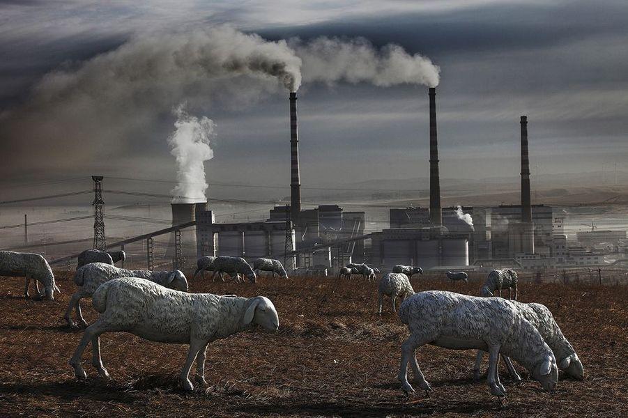 Les principales industries de la ville et de la périphérie de Huolin Gol (charbon, énergie et chimie) ont tellement pollué les prairies que les troupeaux ne peuvent plus y paître. La collectivité locale a installé des sculptures à la place des bêtes. Mongolie-Intérieure, 2012.