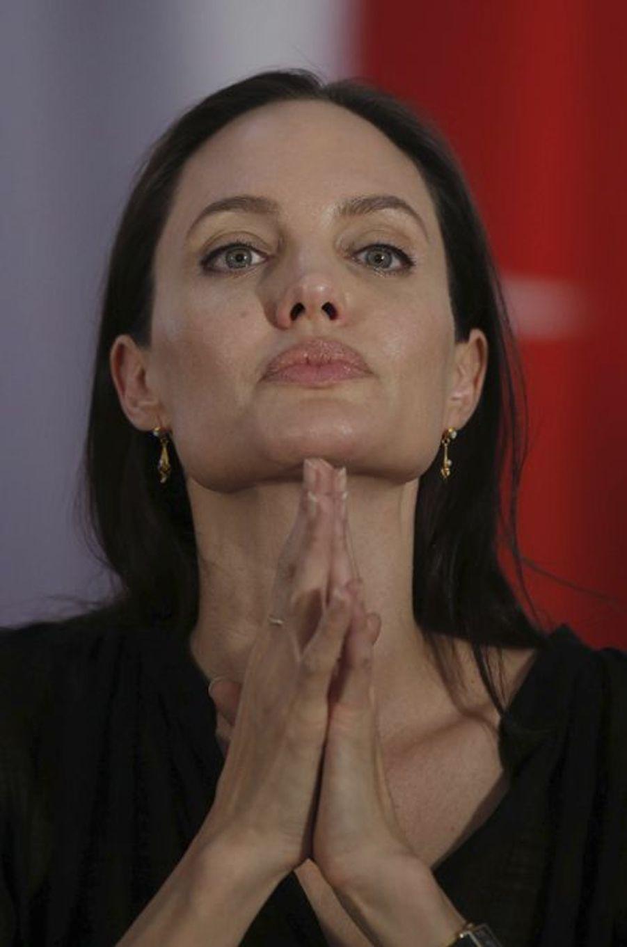 Angelina Jolie à Mardin le 20 juin 2015