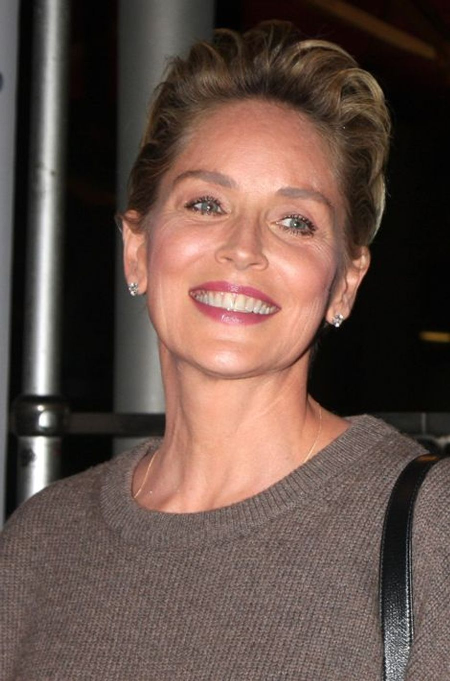 Sharon Stone à l'ouverture du Festival du Film d'Hollywood le 16 octobre 2014