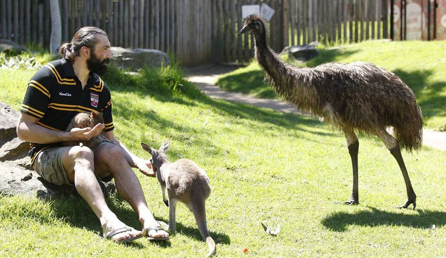 Sébastien Chabal, de passage pour un match amical auquel il participera avec la petite équipe de Balmain en Australie, profite du pays pour visiter le zoo de Sydney.