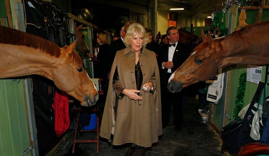 Camilla Parker Bowles, duchesse de Cornouailles, visite les écuries du London International Horse Show.