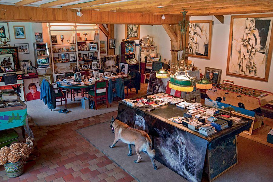 Dans l'ancienne salle de jeu des enfants, sa dernière acquisition : des photos de hyène et de loup.