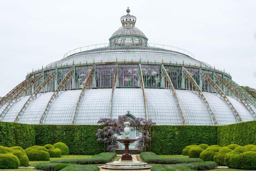 Les serres royales de Laeken à Bruxelles, le 14 avril 2017 : le jardin d'hiver