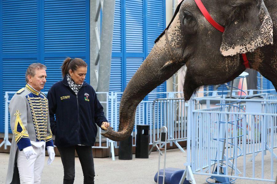 Stéphanie De Monaco Avec Les Éléphants Du Festival Du Crique De Monte Carlo 4
