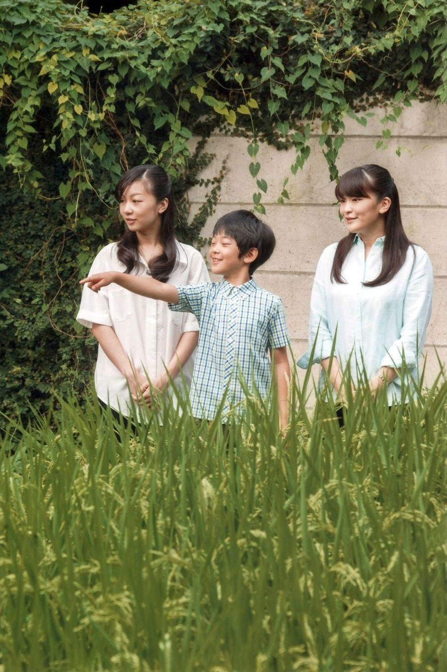 Hisahito du Japon fête ses 10 ans, en plein débat sur la succession