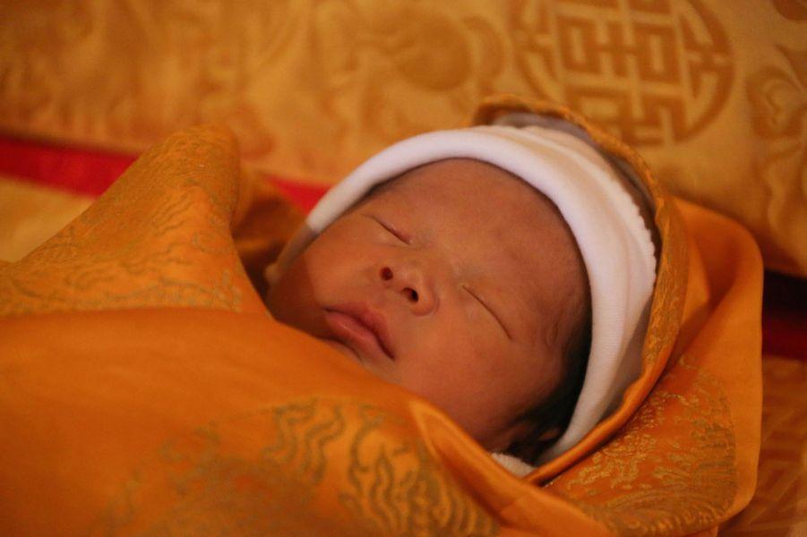 Le prince héritier du Bhoutan, le 19 février 2016