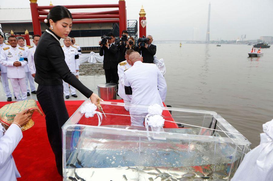 La plus rituelle - Plus jeune des deux filles du nouveau roi de Thaïlande Maha Vajiralongkorn, la princesse Sirivannavari Nariratana a fêté ses 30 ans ce dimanche 8 janvier. La veille, à Bangkok, elle a relâché des petits poissons dans un fleuve.