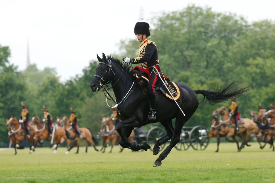 Cérémonie des Royal Horse Artillery à Hyde Park à Londres pour le 62e anniversaire du couronnement d'Elizabeth II, le 2 juin 2015