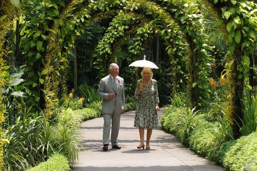 Le prince Charles et la duchesse de Cornouailles Camilla à Singapour, le 1er novembre 2017
