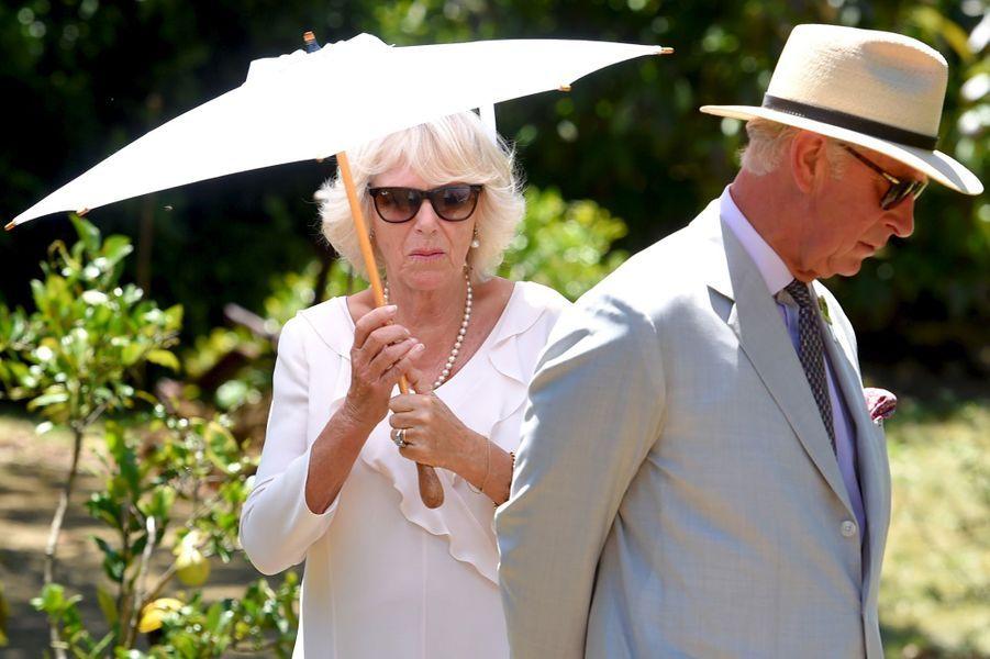 Le prince Charles et la duchesse de Cornouailles Camilla à Albany, le 14 novembre 2015