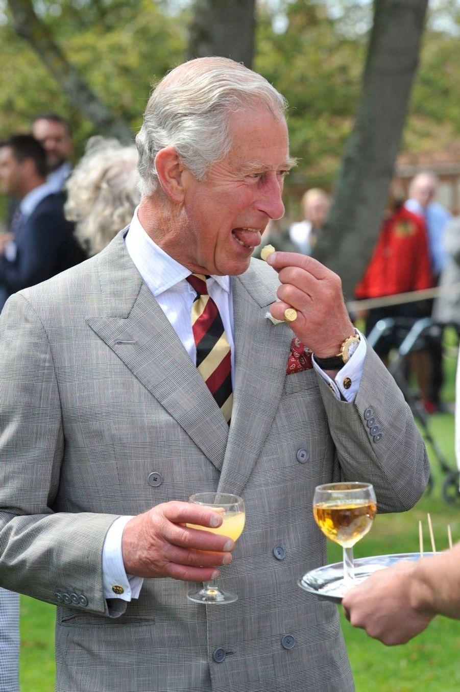 Le prince Charles fait son festival à Glastonbury