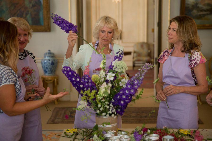 La duchesse de Cournouailles Camilla à Clarence House à Londres, le 1er juillet 2015
