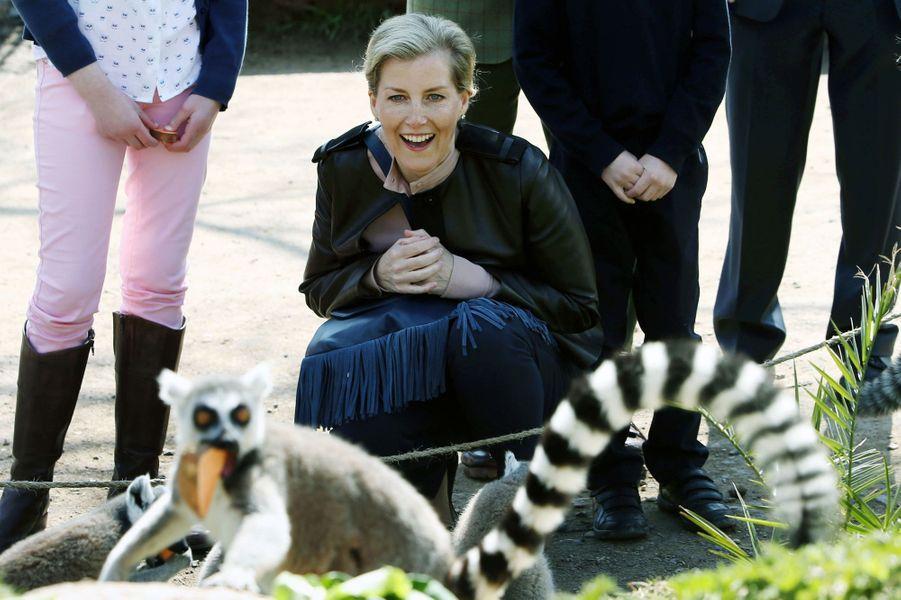 La-comtesse-Sophie-de-Wessex-au-zoo-de-Bristol-le-14-avril-2016.jpg
