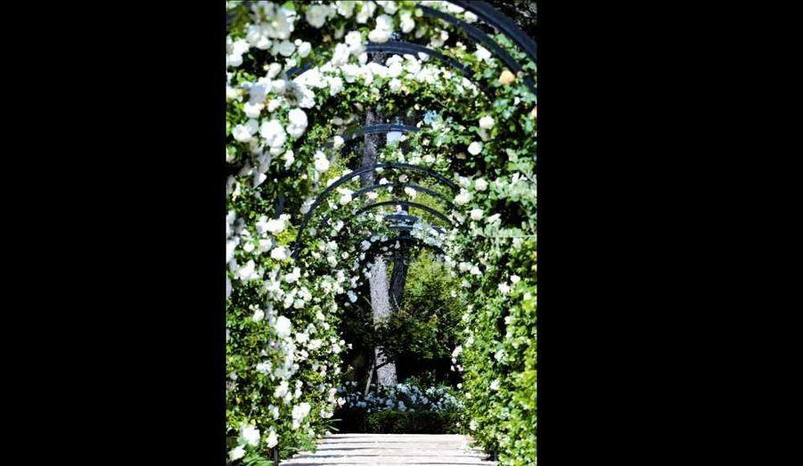 Avec son accent du Sud, l'architecte paysagiste s'exporte partout. De Shenzhen à Gstaad, de Santa Barbara à l'Ukraine. Il dessine des jardins sensuels avec force oliviers et cyprès, roses de Damas et jasmins. «Le jardin méditerranéen est un théâtre. Il joue sept à huit mois de l'année, de jour comme de nuit, où s'exhalent toutes les odeurs.» Né dans un jardin, ou presque, d'un père jardinier dans l'un des plus beaux domaines de Grasse, la Villa Croisset, il est imprégnée des senteurs du Sud, et suit l'Ecole nationale du jardin et du paysage de Versailles. Il a dessiné plus de 1000 jardins, de Monaco à Saint-Paul de Vence, dont la Villa Fiorentina à Cap-Ferrat et le Potager du roi des Belges à Cap-d'Antibes. S'il est sollicité par les contrées nordiques pour apporter l'esthétique des jardins du Sud, en bon Méditerranéen il ne cesse de leur répéter: «Un olivier, ça se mérite!»Son conseil: «Se lever tôt! C'est au petit matin que l'on sent le mieux les besoins de son jardin. L'arrosage automatique est un barda de fainéant! Coupez-le et arrosez vous-même en dehors des heures chaudes, ni trop ni trop peu. C'est aussi la meilleure façon d'en profiter.»