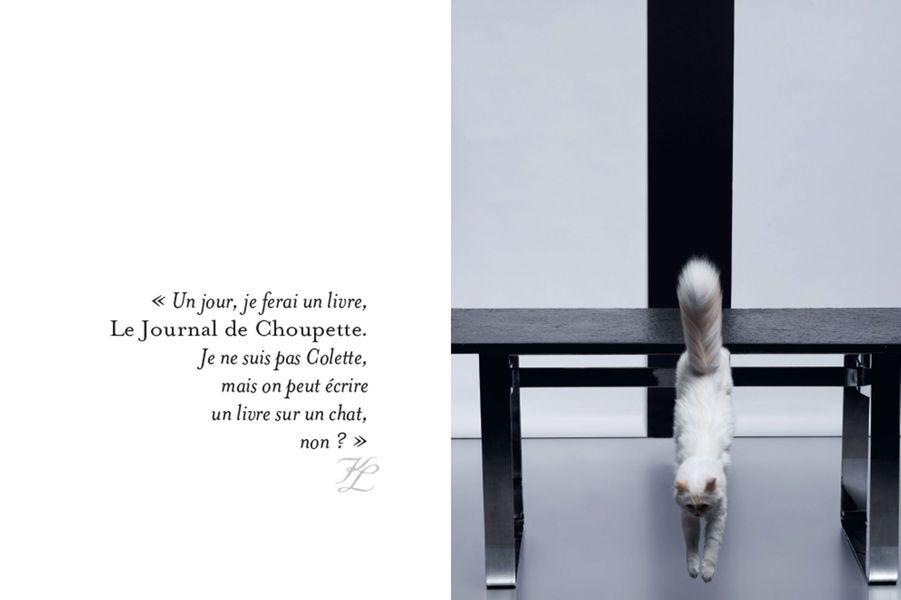Choupette, le chat de Karl Lagerfeld, est la star d'un livre