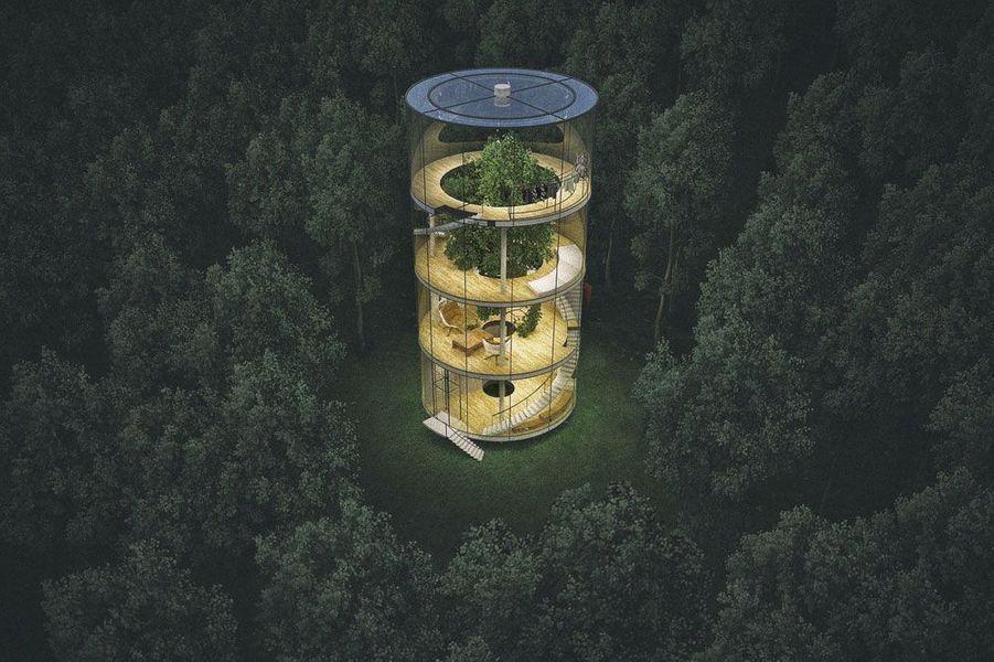 La maison de verre serait dotée de quatre étages avec un arbre à l'intérieur