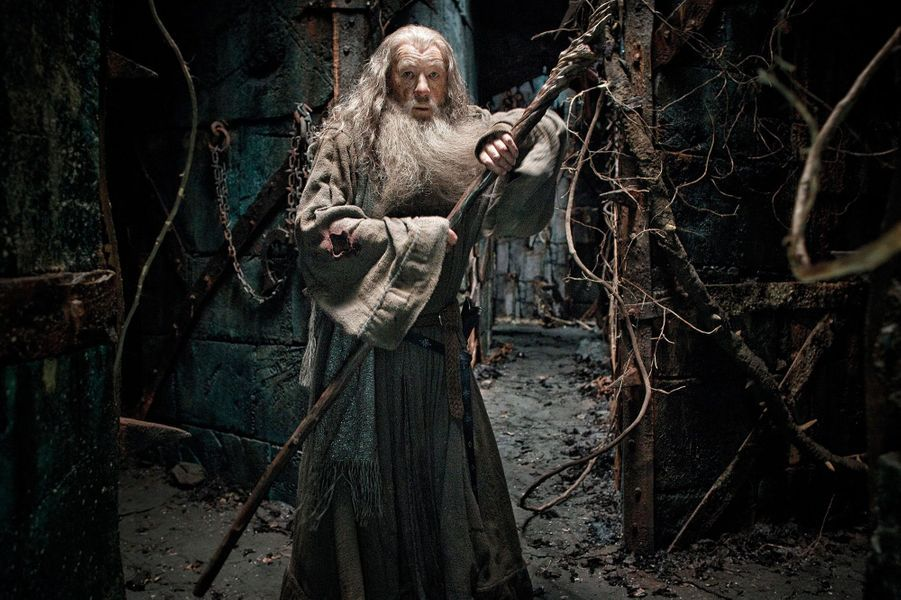 """""""Le Hobbit : La Désolation de Smaug"""", 2013"""