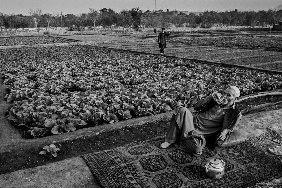 An Afghan farmer resting alongside his farm, Eastern Kabul.