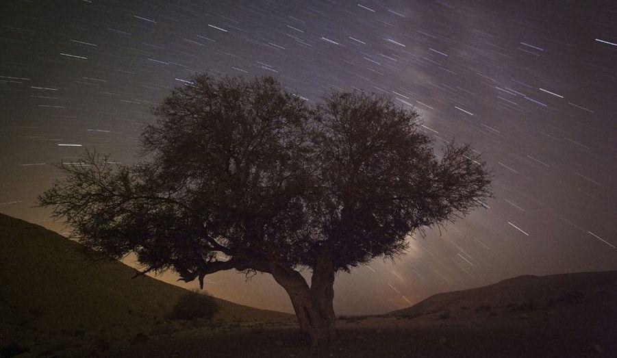 La pluie de météores annuelle des Perséides, près de la ville méridionale de Mitzpe Ramon, en Israël, permet d'observer les étoiles.