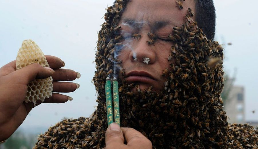 She Ping, 32 ans, a battu un record du monde mercredi en recouvrant son corps avec plus de 33 kilos d'abeilles, soit environ 331000 insectes. L'ancien record était fixé à environ 26,8 kilos.