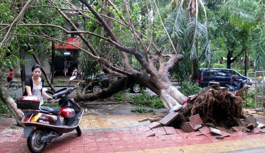 Après le passage du typhon Chanthu, les habitants de la ville de Zhanjiang –située dans la province de Guangdong- tentent de reprendre une vie normale.