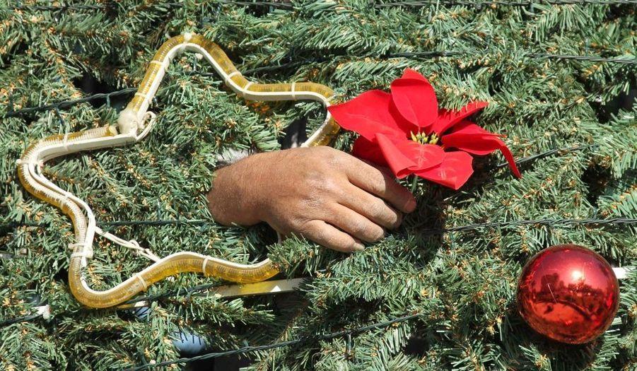 Un ouvrier décore un arbre de Noël à Sidon, ville côtière du Sud du Liban.